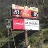 DSC05797 - March 2011