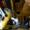 DSC 0375-BorderMaker - 09-04-2011