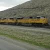 DSC06771 - March 2011