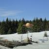 DSC08263 - March 2011