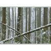 lerwick snowy pano - Panorama Images
