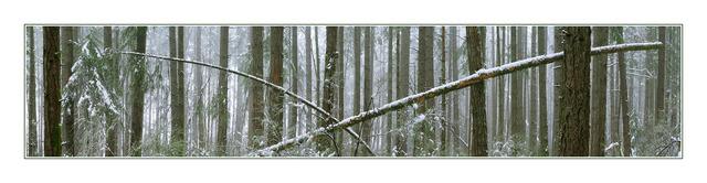 lerwick snowy pano Panorama Images