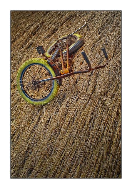 Royston bike Abandoned