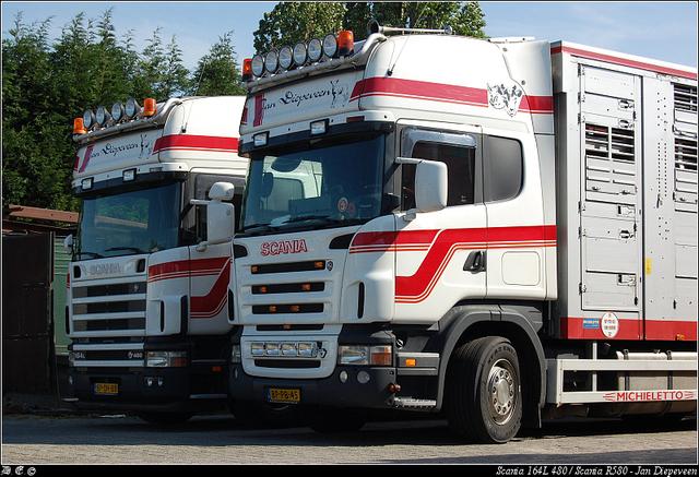 dsc 4388-border Diepeveen, Jan - Elst