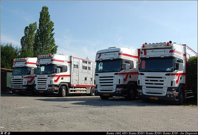 dsc 4390-border Diepeveen, Jan - Elst