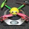 P5053868 - Quadrocopters
