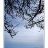 PT200804 - Nature Images