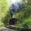 T02854 995906 Sternhaus Ram... - 20110424 Harz
