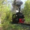 T02857 995906 Sternhaus Ram... - 20110424 Harz