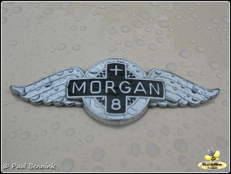 Morgan Plus 8-BorderMaker -