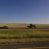 DSC09893 - 2011 july