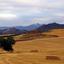 IMGP2266r - Camino de Santiago