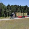 DSC00185 - August 2011