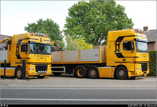 dsc 5805-border Harteveld, H - Ede