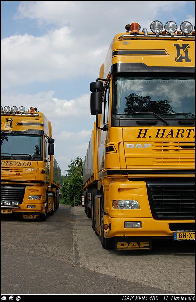 dsc 5806-border Harteveld, H - Ede