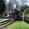 T02944 997245 Sorge - 20110912 Harz