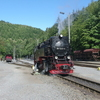 T02955 997245 Eisfelder Tal... - 20110912 Harz