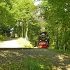 T02982 997235 Osterteich - 20110914 Harz