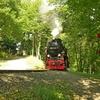T02983 997235 Osterteich - 20110914 Harz