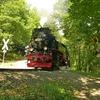 T02984 997235 Osterteich - 20110914 Harz