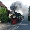 T03006 995902 996001 Wernig... - 20110915 Harz
