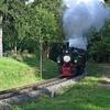T03008 995902 996001 Drei A... - 20110915 Harz