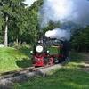 T03009 995902 996001 Drei A... - 20110915 Harz