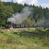 T03014 995902 996001 Drei A... - 20110915 Harz