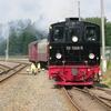 T03057 995906 Stiege - 20110916 Harz