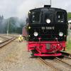 T03058 995906 Stiege - 20110916 Harz