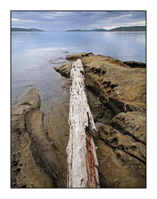 SaltSpring Arbutus Point 4 Landscapes