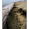 SaltSpring Arbutus Point 2 - Landscapes