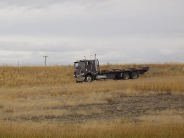 DSC04459 2011 october