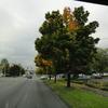 DSC05929 - 2011 october