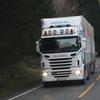 IMG 8143 - November 2011