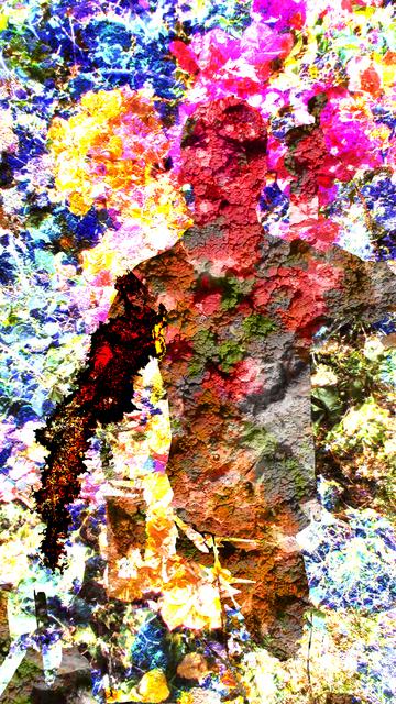 bjorn collage Bjorn