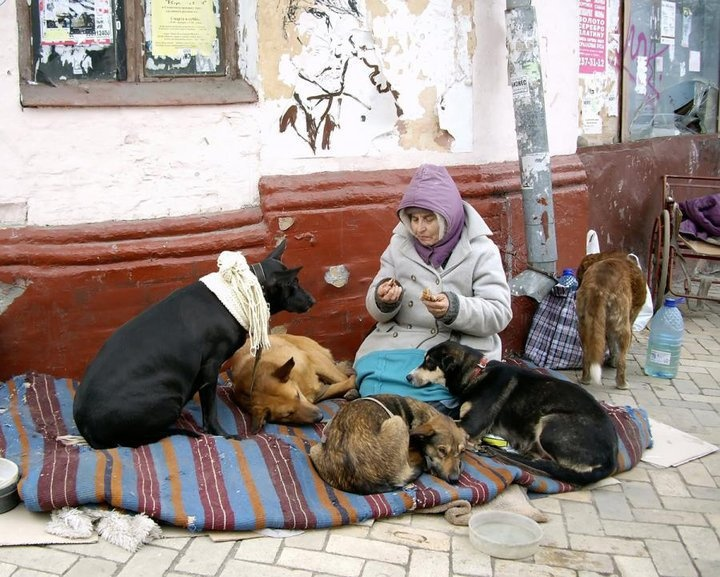 Homeless Woman with dogs -