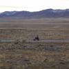 DSC08127 - 2011 Dec
