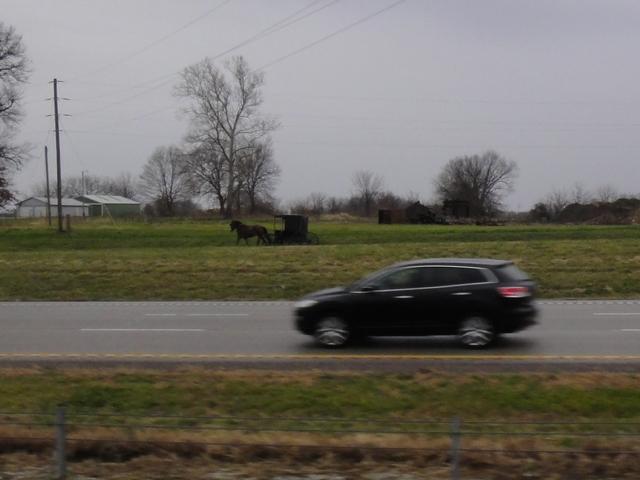DSC08927 2011 Dec
