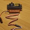 P1000263 - Flexacopter