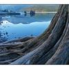 Comox Lake 2012 4 - Landscapes