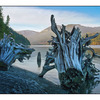 Comox Lake 2012 5 - Landscapes