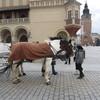 IMG 0452 - Zdjęcia z Polski 2012