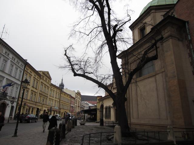 IMG 0496 Zdjęcia z Polski 2012