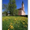 - Birnau Church with field - Germany