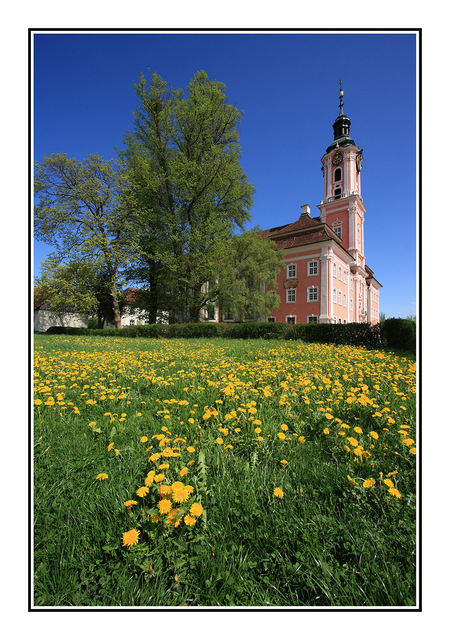 Birnau Church with field Germany