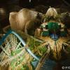 wodan maquette klein - Europa Park april 2012