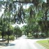 IMG 1151 - may 2012