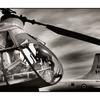 Comox AirPark 07 - Aviation