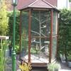 Tuin 27-05-08 07 - In de tuin 2008